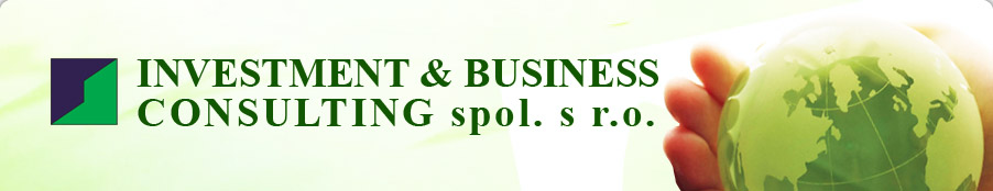 Investment & Business Consulting